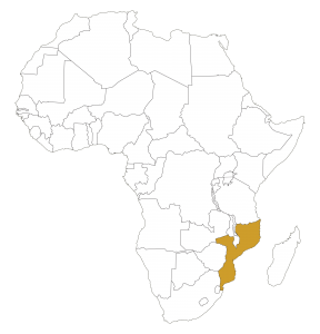 africa-map-transparent-background - USA Mobilizing Office