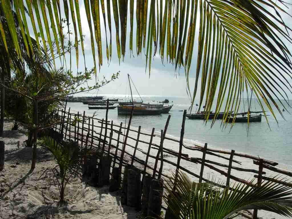 Where the Dhows Sail